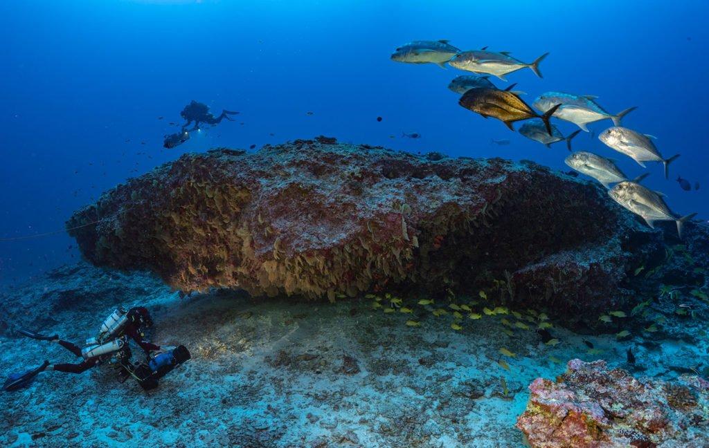 La PÇrouse underwater cave Laurent Ballesta Blancpain Ocean Commitment