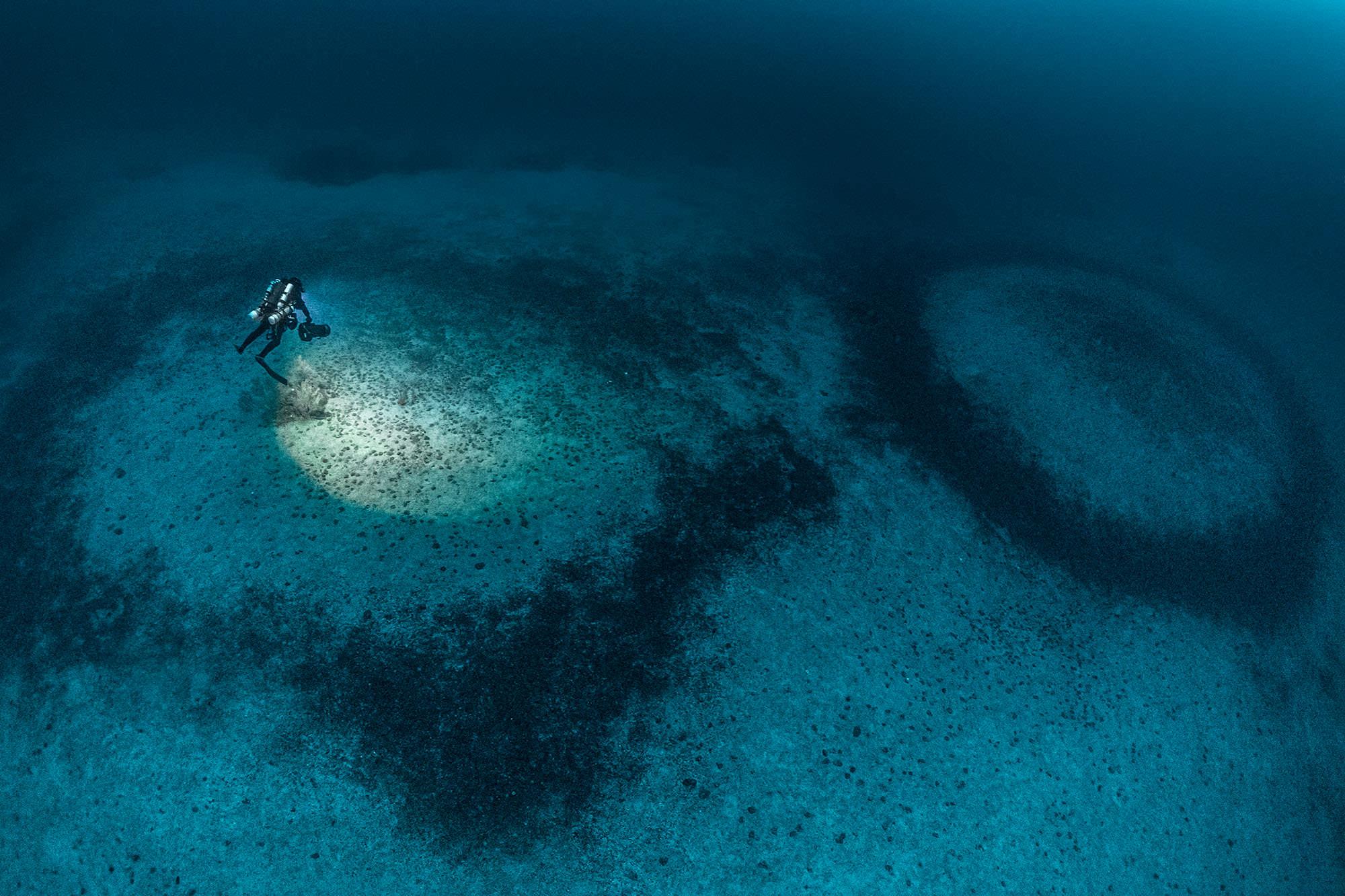 Coralligenous rings Claurent Ballesta Gombessa VI