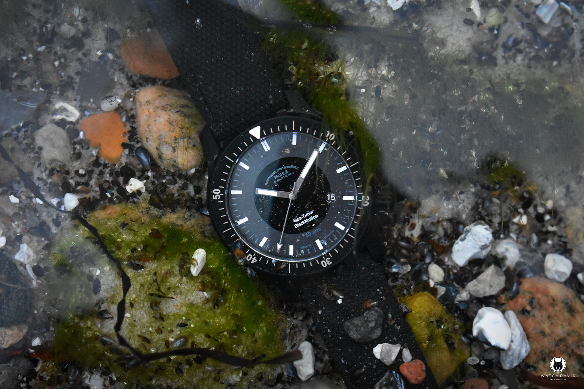 Mühle Glashütte Sea-Timer BlackMotion